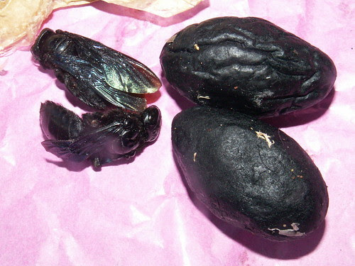 chook fong (1)