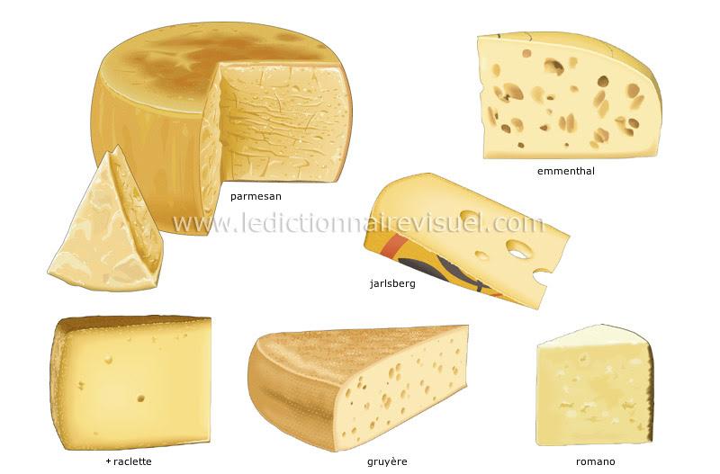 fromages à pâte pressée - Le Dictionnaire Visuel