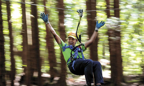 Zip line attraction offers a rush for those brave enough to try Zipline adventure tours have skyrocketed...