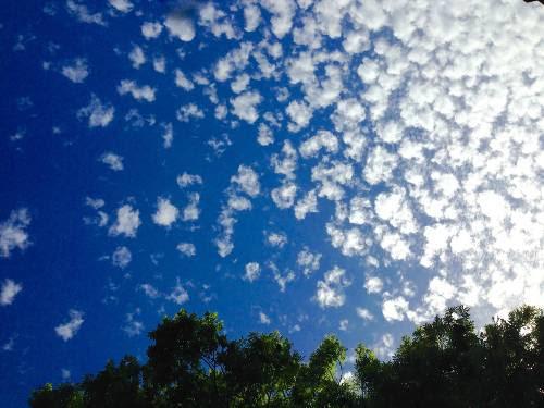 summerclouds2015-1.jpg