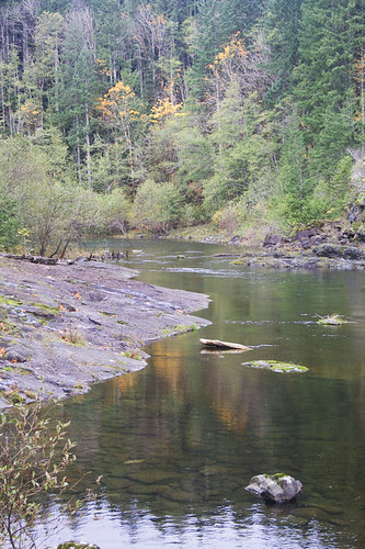campbell river, above elk falls