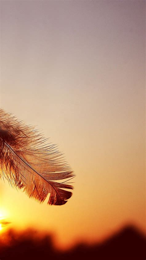 Samsung Galaxy Note 3 Stock Feather Sunset android wallpapers