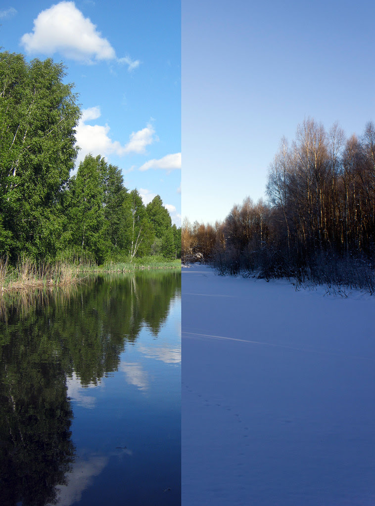 Early Summer Vs. Midwinter