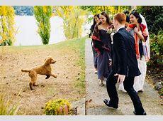 Mercer Island Community Event Center Wedding Photos   Di & Zach
