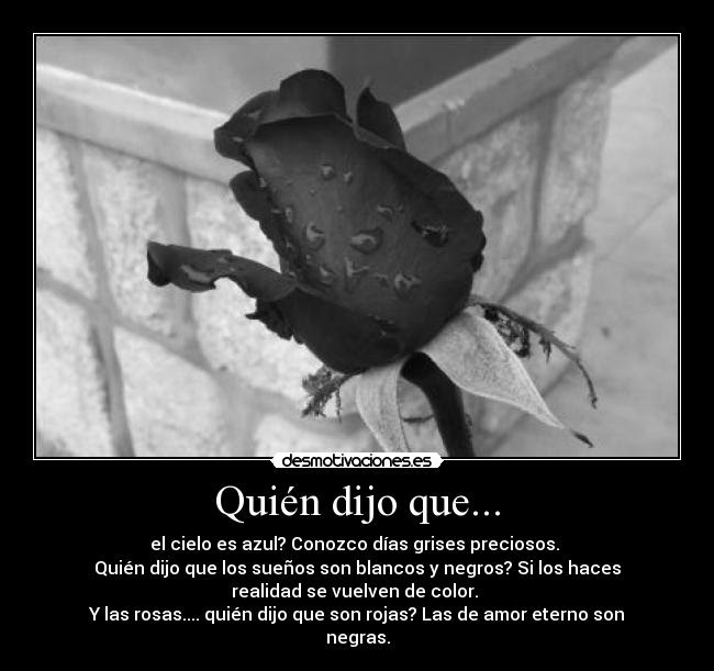 Imagenes De Rosas Negras Con Frases De Amor Imagui
