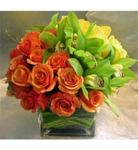 Citrus Zest [Wfg119]   Roses