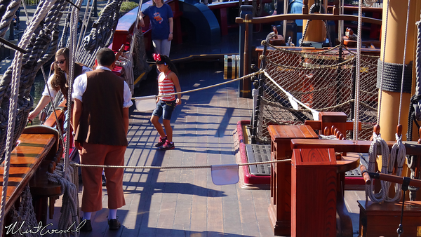 Disneyland Resort, Disneyland, Columnia