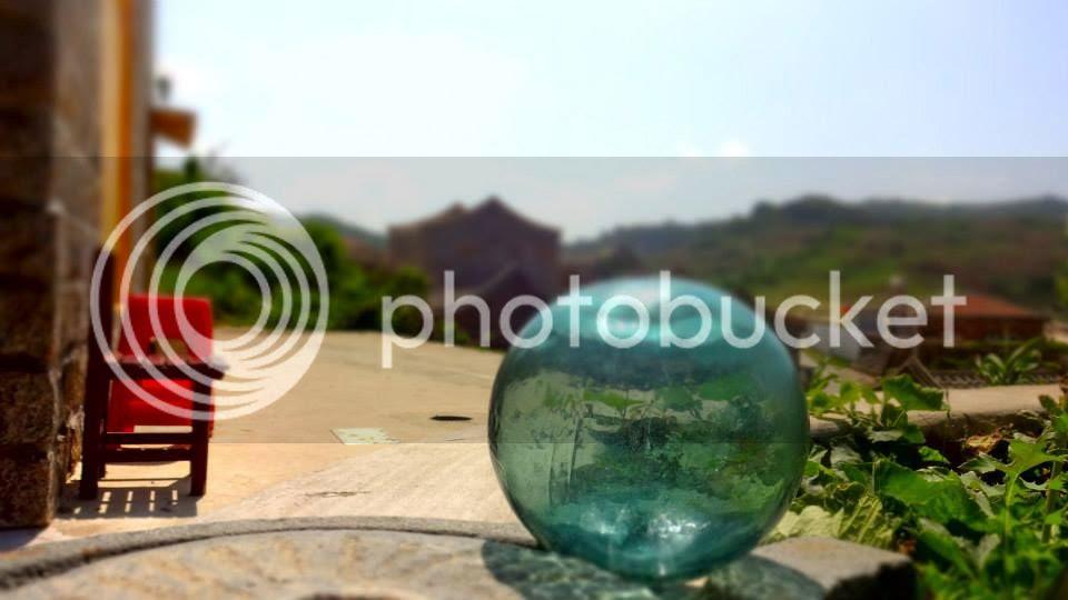 photo 577990_10151932513741202_627003066_n.jpg
