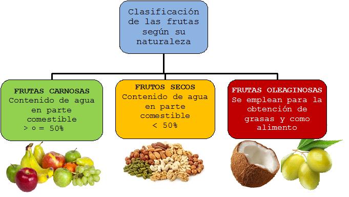 Resultado de imagen para clasificacion de las frutas