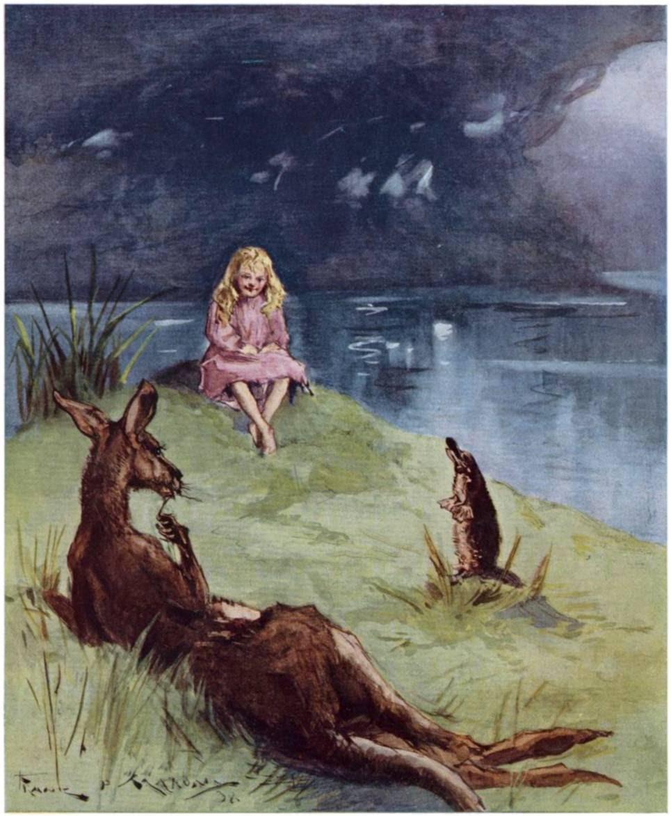 Kangaroo frontis.jpg