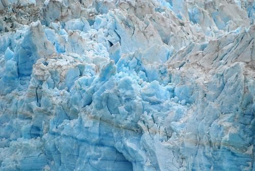 Glacier Bay Alaska 2007