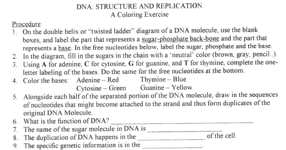 Dna Fingerprint Worksheet Answers - worksheet