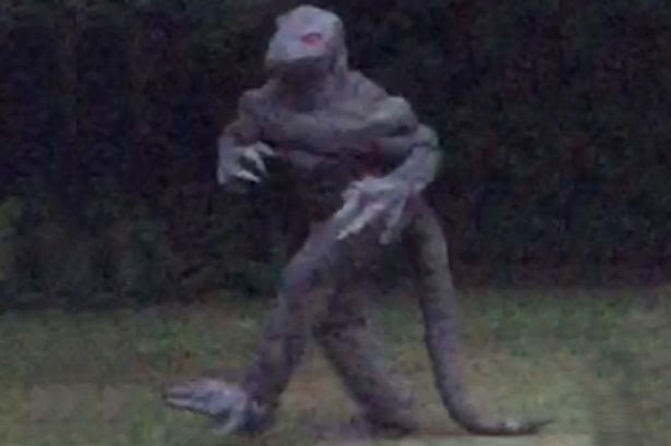 Is this the Lizard man?