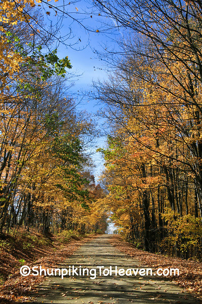 Autumn Road Scene, Vernon County, Wisconsin