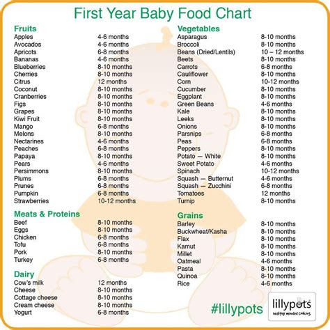 baby food list homemadebabyfoodisbest