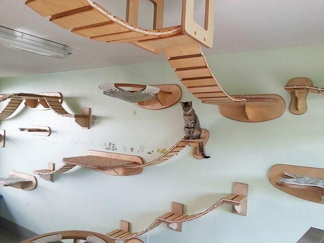 móveis-para-gatos-20