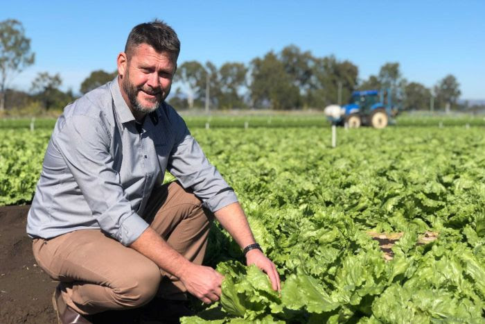 Sean Makepease from Barden Produce squats in a lettuce field.