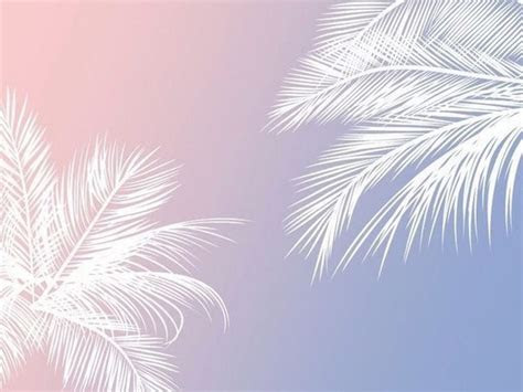 cute backgrounds  bmw wallpaper