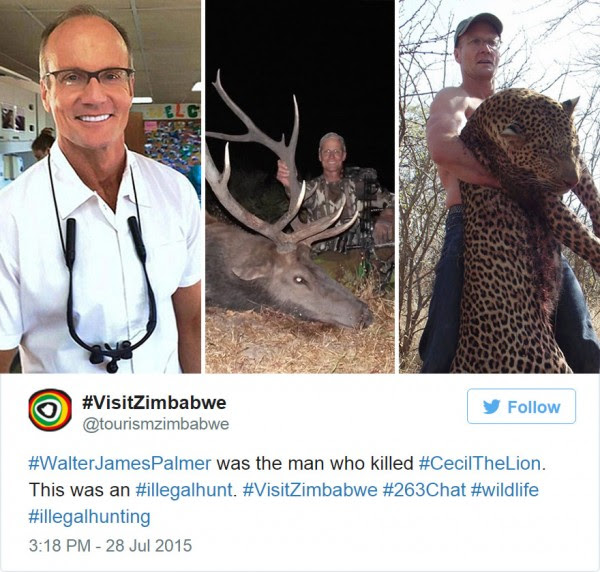 cecil-lion-illegal-hunting-internet-backlash-walter-palmer-zimbabwe-9