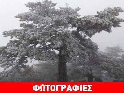 Τα πρώτα χιόνια … έπεσαν στον Πάρνωνα!