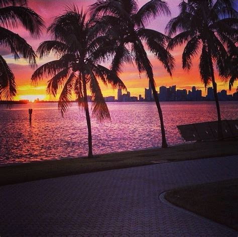 Miami Sunset Pictures, Photos, and Images for Facebook