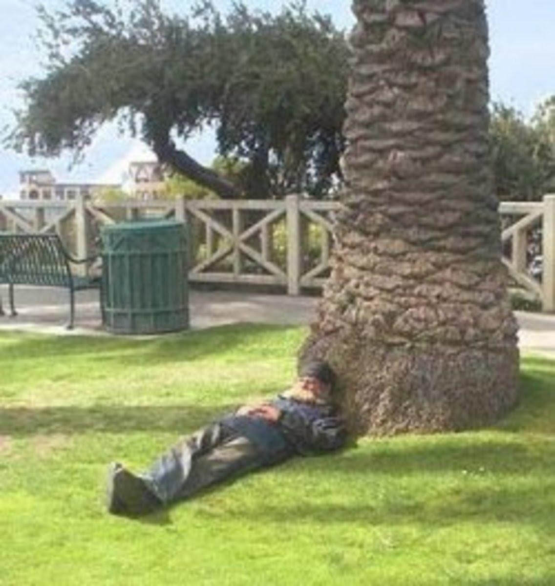 Homeless man sleeping under a palm tree in Santa Monica
