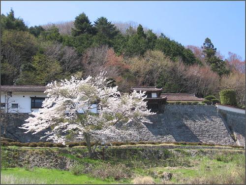 077 Hirokane residence