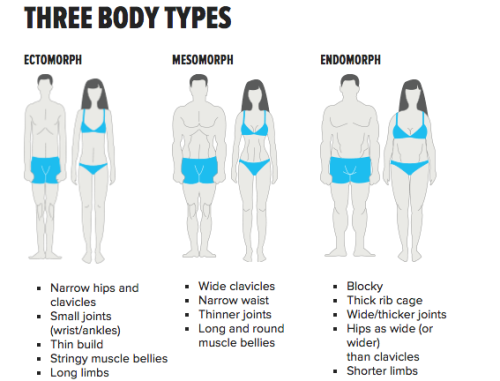 Run dress types endomorph bodycon different on ectomorph body mesomorph