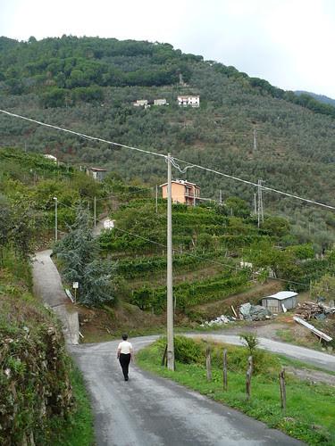 Ne Italy