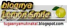 blognya Lemon Smile