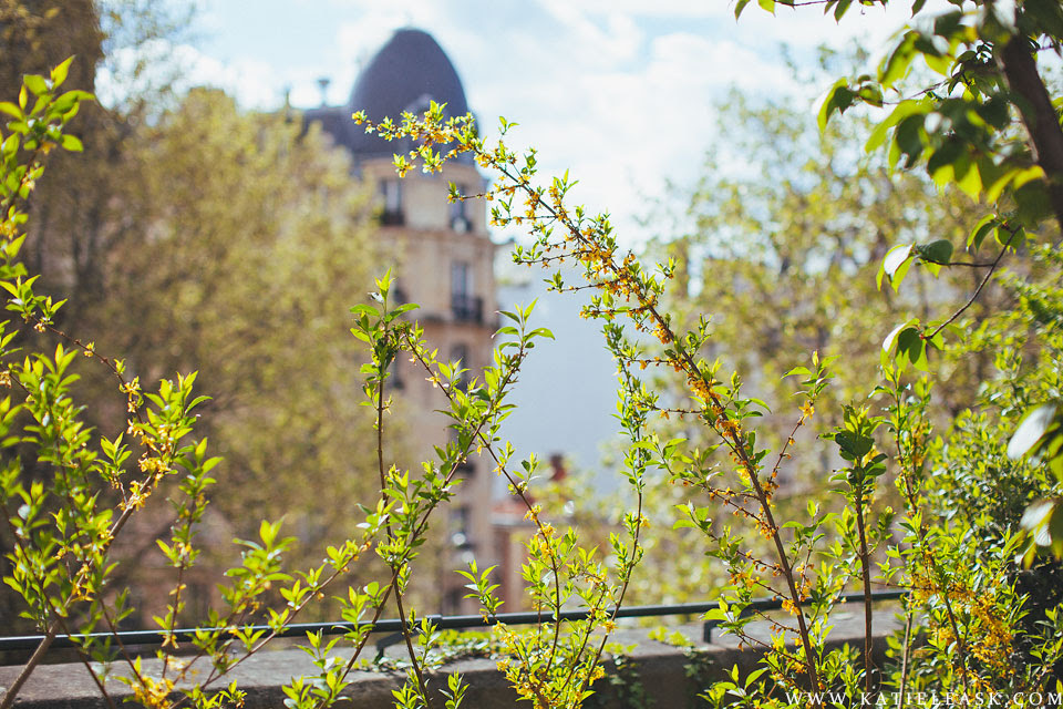 Le-Marais-Walk---Katie-Leask-Photography-003-S