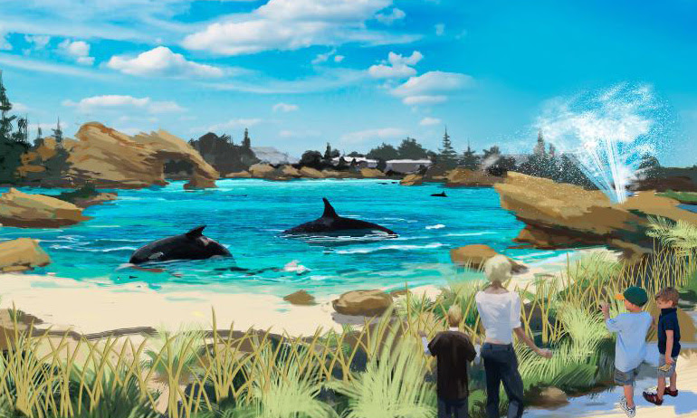 American Humane Association  Endorses Larger Orca Tanks at SeaWorld