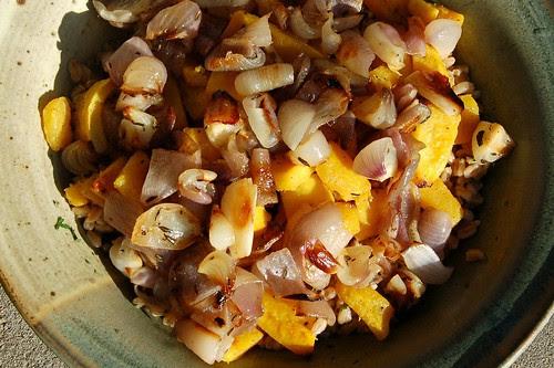 Roasted Delicata Squash Salad With Red Onions & Farro