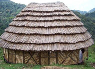 CuckooLand Lodge Bwindi Uganda