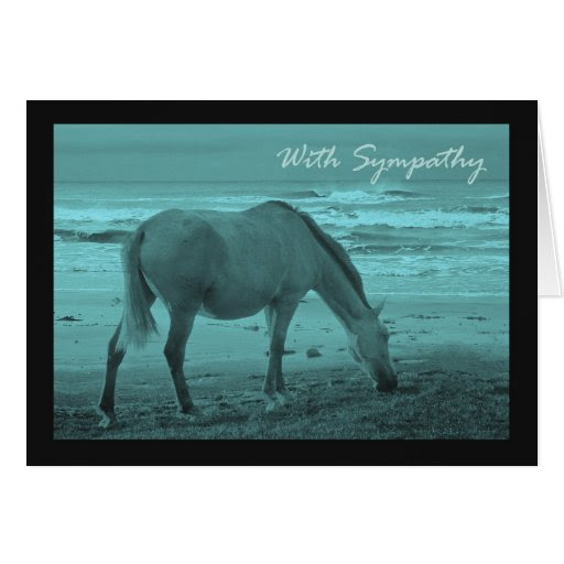 Horse Passing Away Quotes