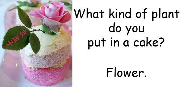 flour 麵粉 flower 花 homophone 同音異義