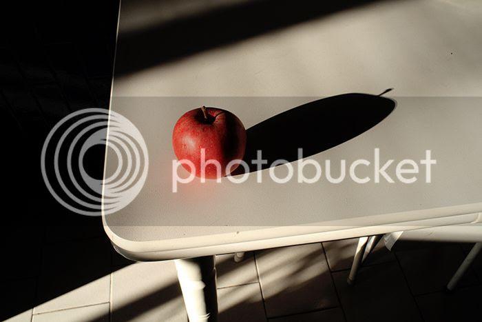 photo newangleIMG_0275_zps53a661e8.jpg