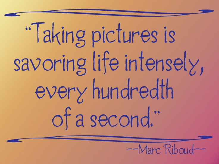 Quotes About Photographic Memory 28 Quotes