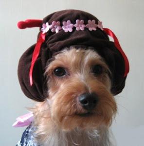 geisha-hat_bowie