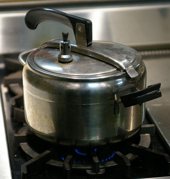 File:Pressure cooker oval lid.jpg