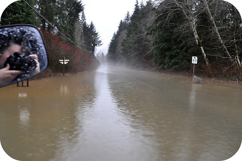 Flood Jan 2010