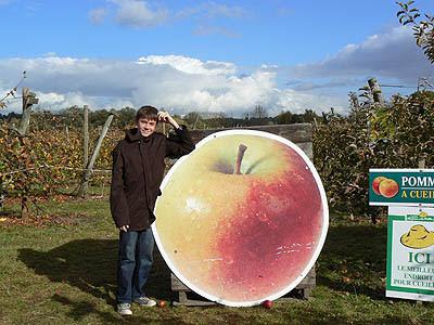 clem et les pommes.jpg