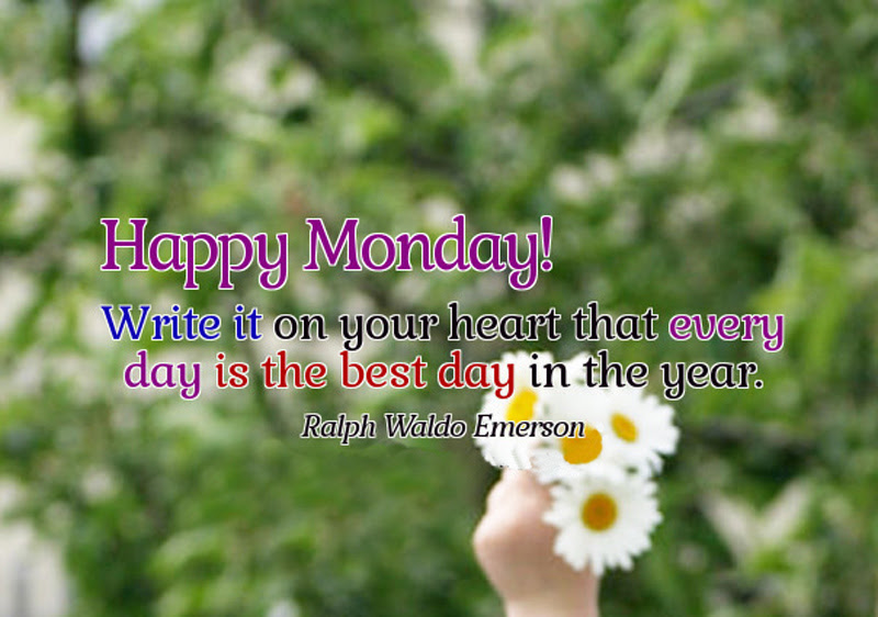 Happy Monday Wishes Funny Messages Monday Quotes Wishesmsg