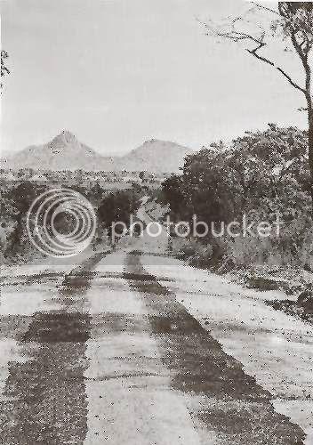 Strip Road6, Strip roads