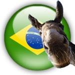 País acéfalo (Foto: Arquivo Google)