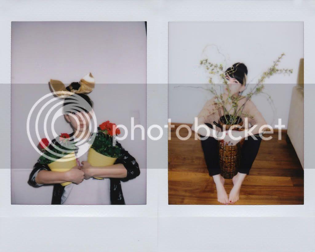 polaroid fuji instax mini 55 photos camera