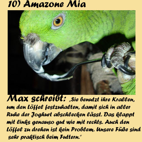 10-Amazone-Mia