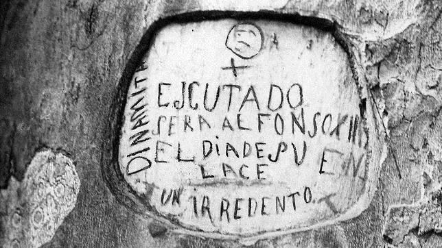 El árbol del Retiro que anunció el atentado contra Alfonso XIII el día de su boda