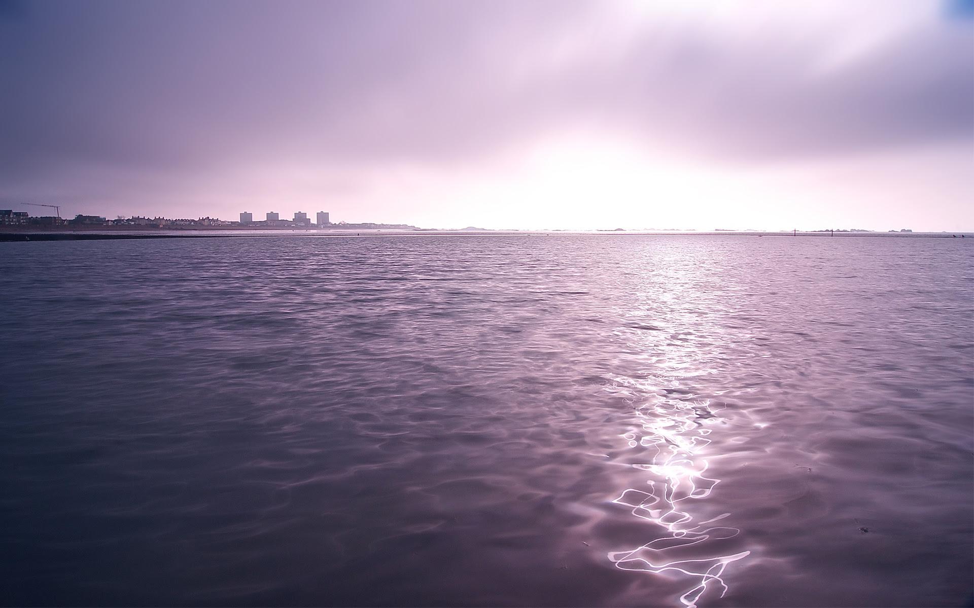 WALLPAPERS HD Purple Twilight