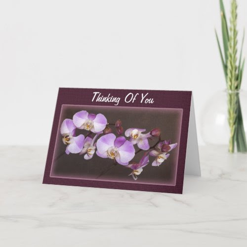 Magical Beauty of Phalaenopsis Orchid card